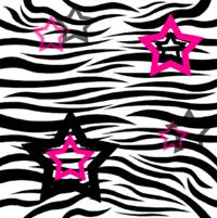 Zebra w gwiazdki